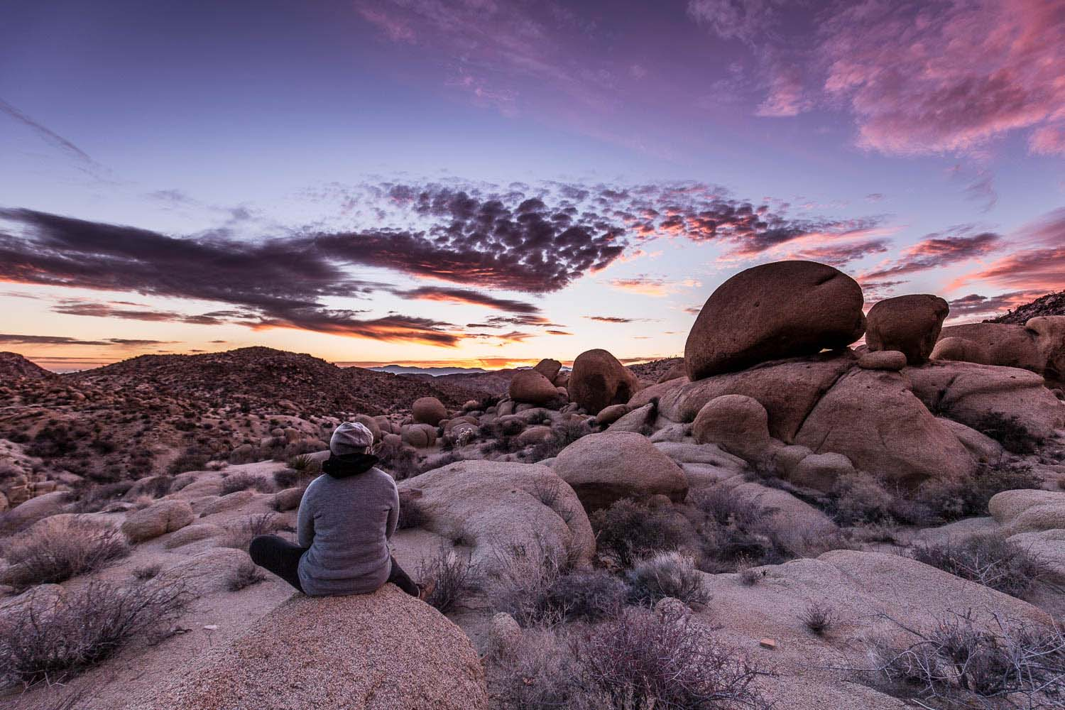 sunset-joshua-tree-national park