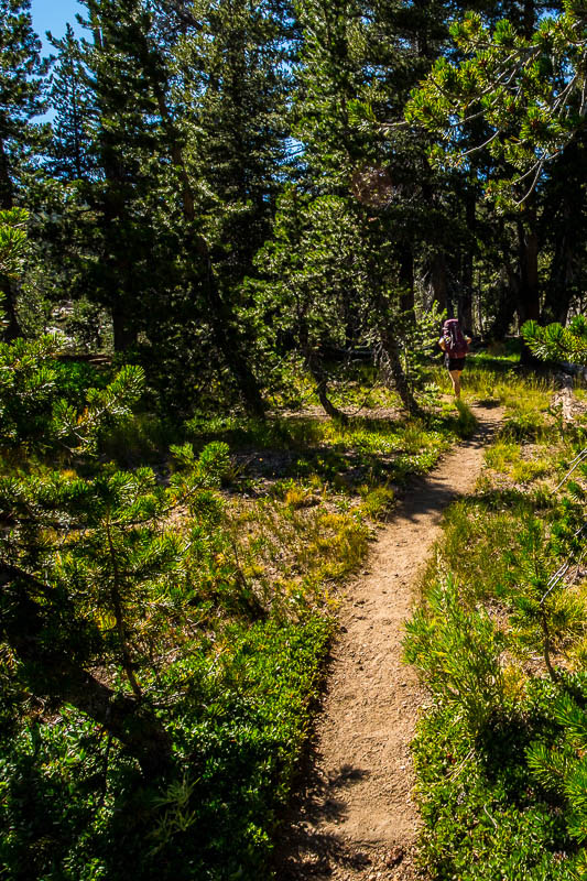 hiking-emigrant-wilderness