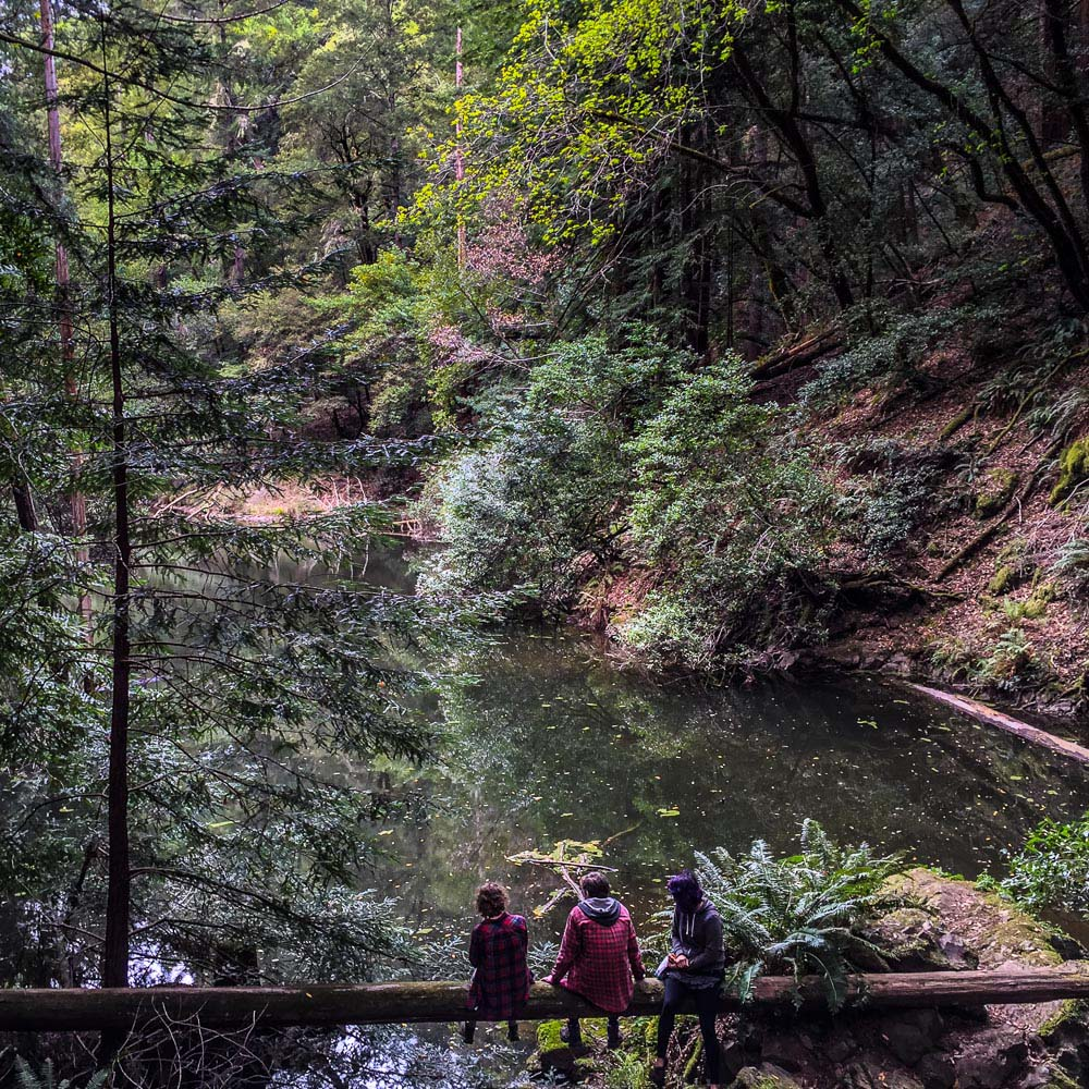 Cataract Fall hike in Marin County